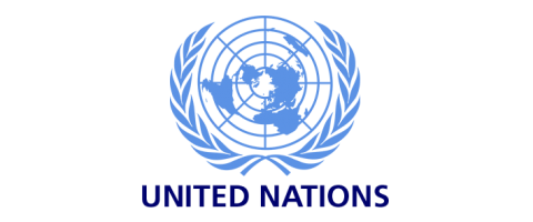 united nations gcid